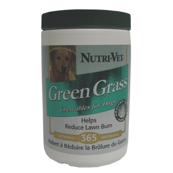 Grass Guard Liver Chewables For Dogs / Size 365 Count