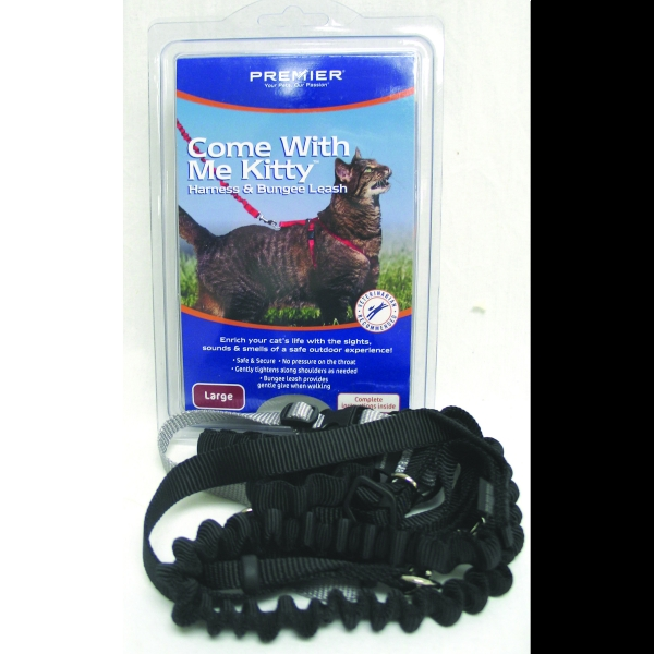 Come With Me Kitty Harness and Bungee Leash / Size (Large - Black)