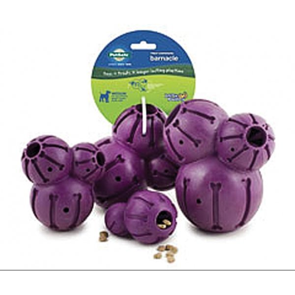 Busy Buddy Treat Dispensing Barnacle / Size (XSmall) Best Price