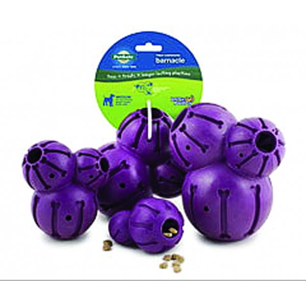 Busy Buddy Treat Dispensing Barnacle / Size (Large) Best Price