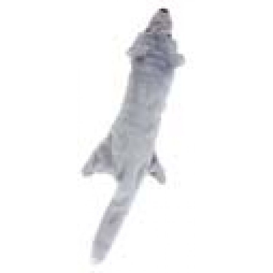 Skinneeez Big Bite Dog Toy / Type Wolf