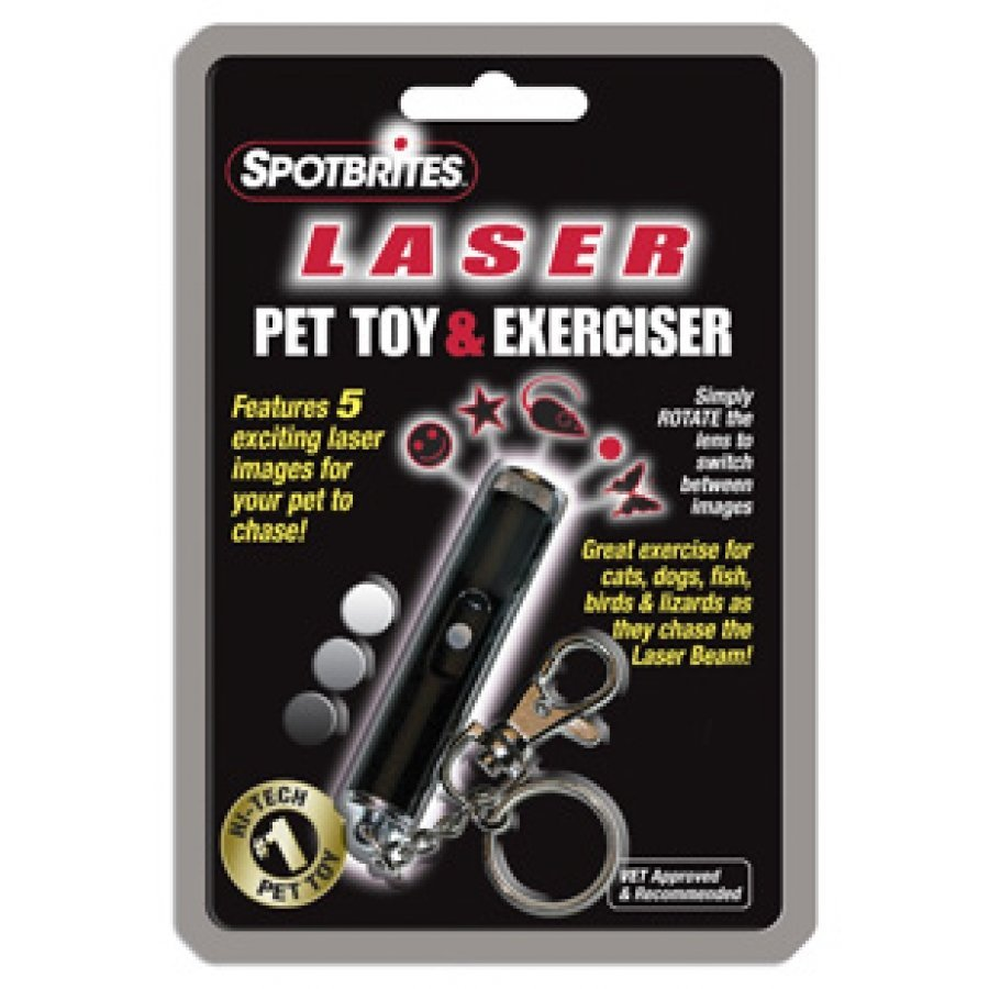 Hologram Laser Pet Toy