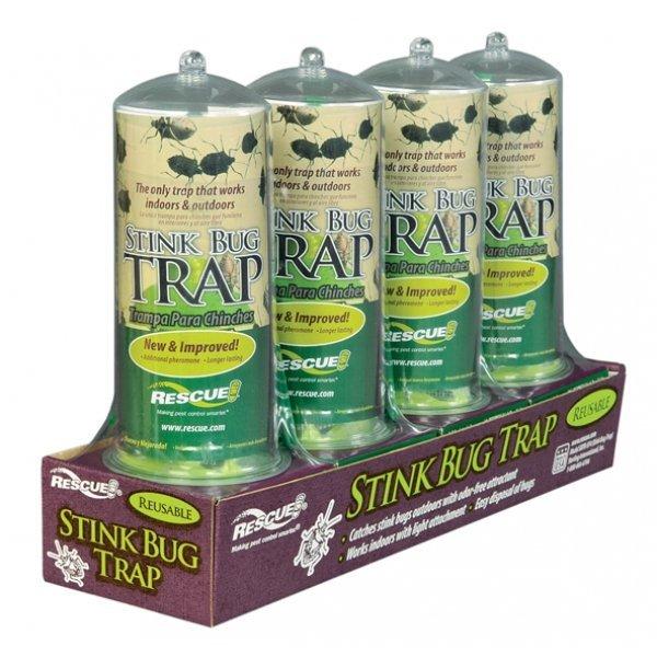 Stink Bug Trap Best Price