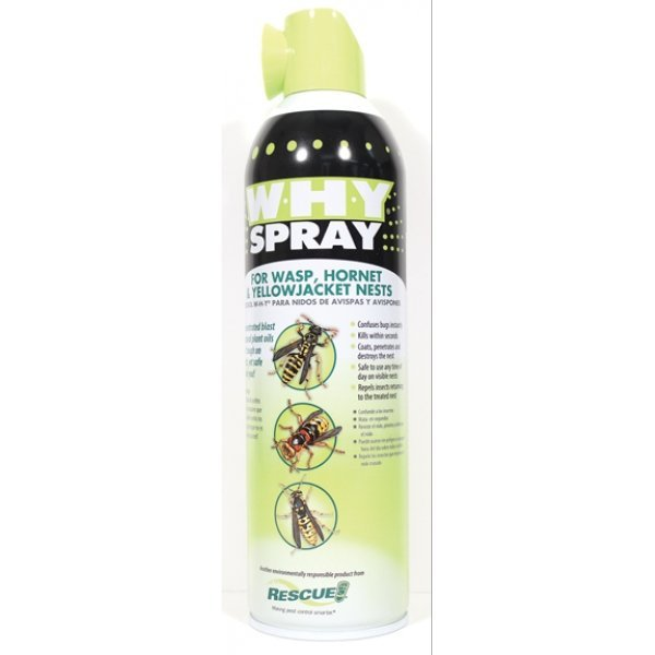 W-h-y Spray For Wasp  Hornet and Yellow Jacket Nests - 14 oz. Best Price