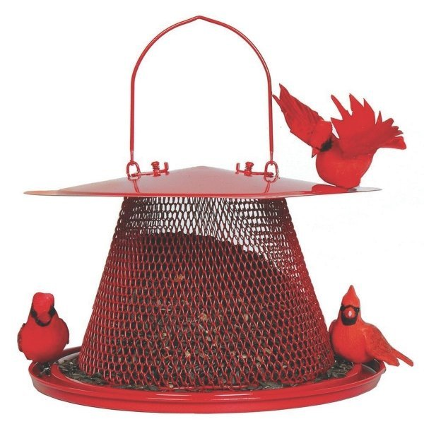 Cardinal No-No BirdFeeder Best Price