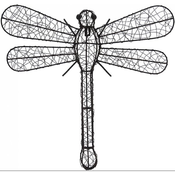 Dragonfly Best Price