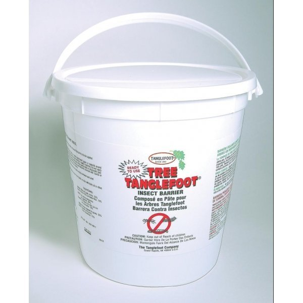 Tree Tanglefoot Pest Barrier / Size (5 lbs) Best Price