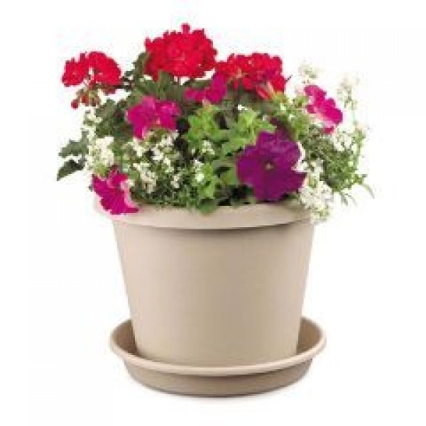 Classic Flower Pot / Size (6 in. / Clay) Best Price