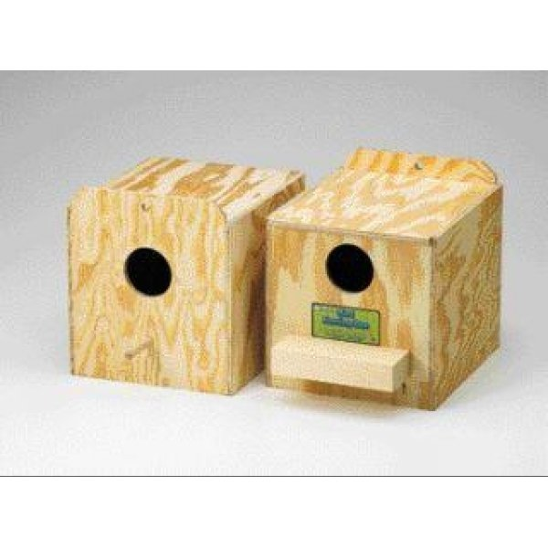 Ware Nest Boxes for Birds / Type (Regular) Best Price