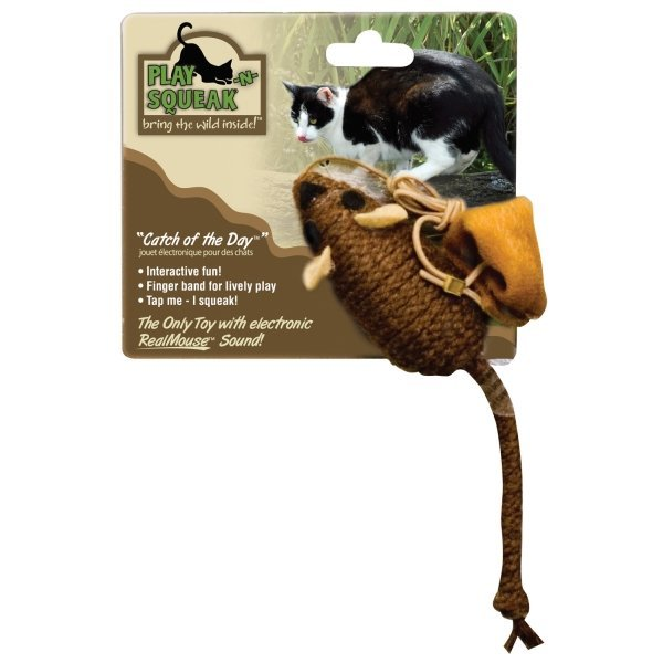 Play-N-Squeak Wee Catch of the Day Cat Toy Best Price