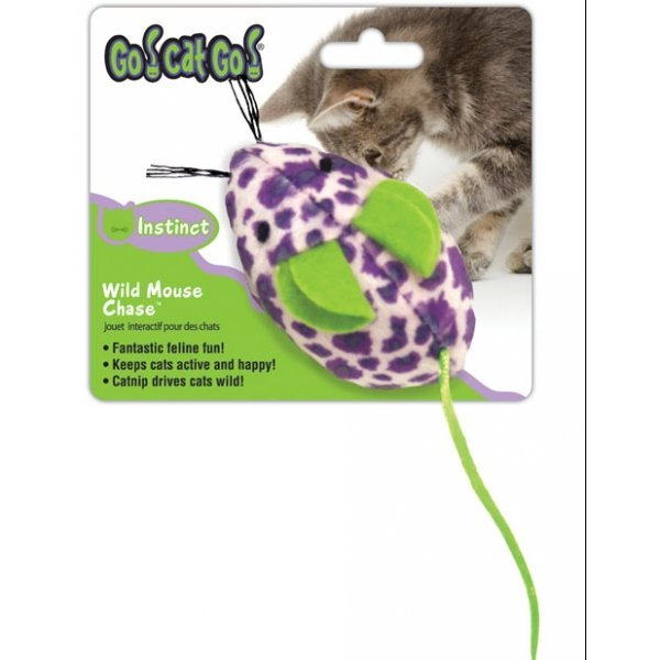 Wild Mouse Chase Cat Toy Best Price