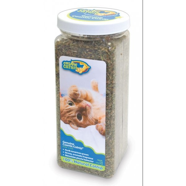 Cosmic Catnip Jar / Size (4 oz.) Best Price
