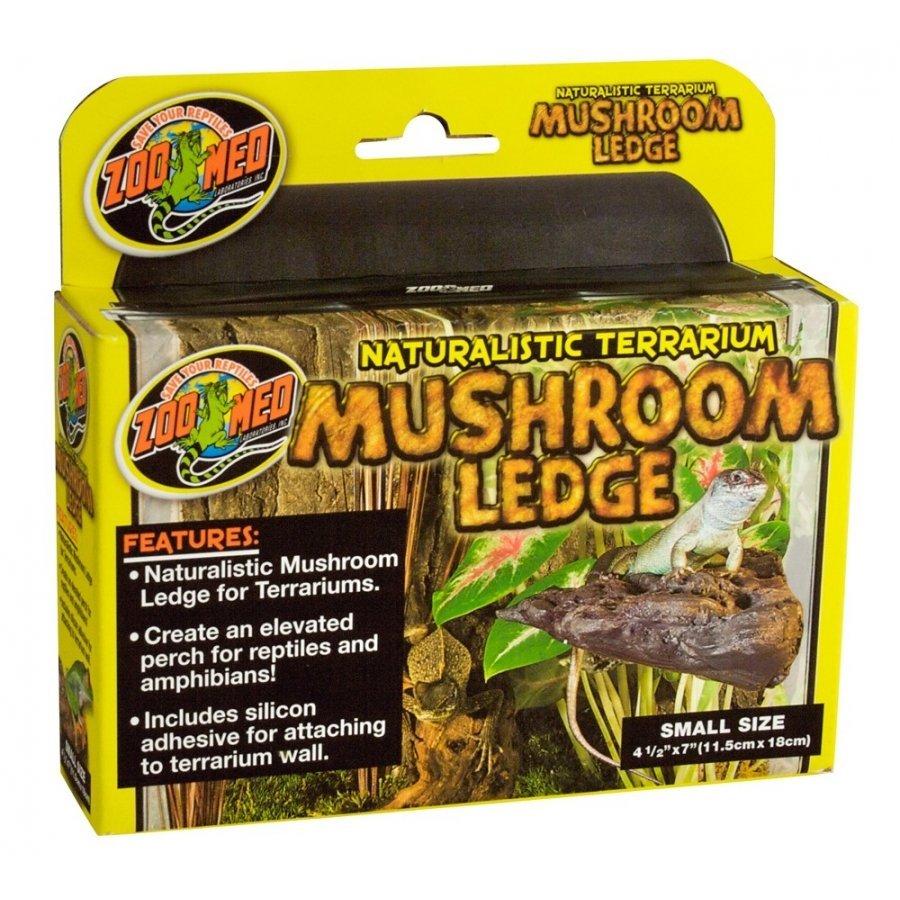 Reptile Mushroom Ledge / Size Small