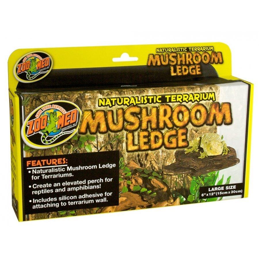 Reptile Mushroom Ledge Reptile Products Gregrobert