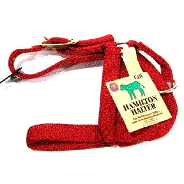 Nylon Calf Turnout Halter - 1 inch / Color (Red) Best Price