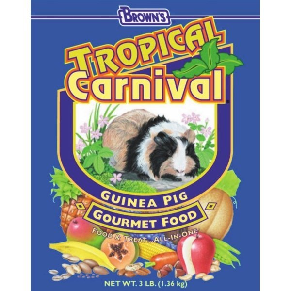 Tropical Carnival Guinea Pig / Size (3 lb) Best Price