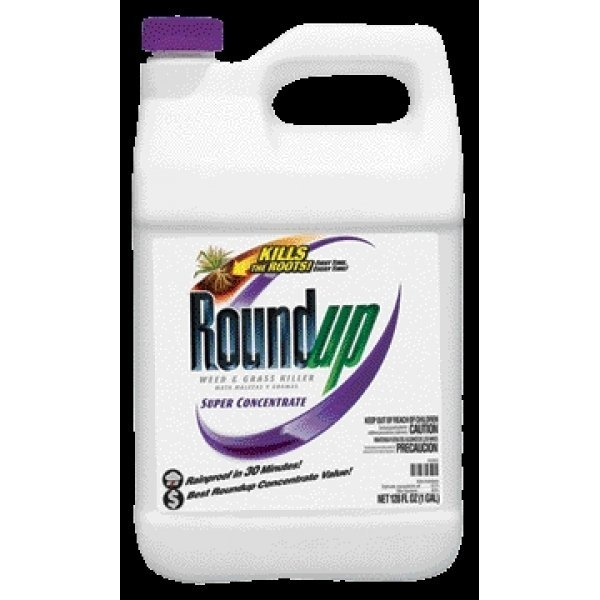 Roundup Weed and Grass Killer Super Conc / Size (1 gallon) Best Price