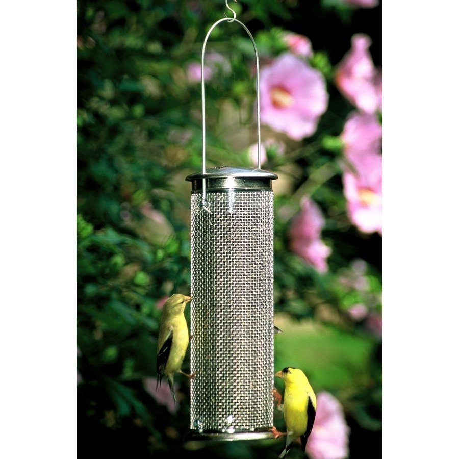 Nyjer Mesh Finch Feeder Wild Bird Supplies Gregrobert
