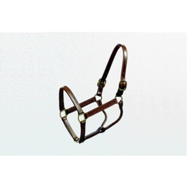Equine Halter - Double Ply Leather / Size (Horse 1 in / Brown) Best Price