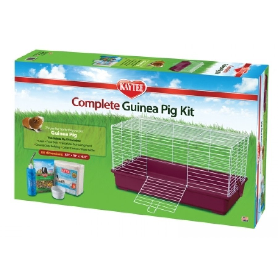 Kaytee Complete Guinea Pig Kit Best Price