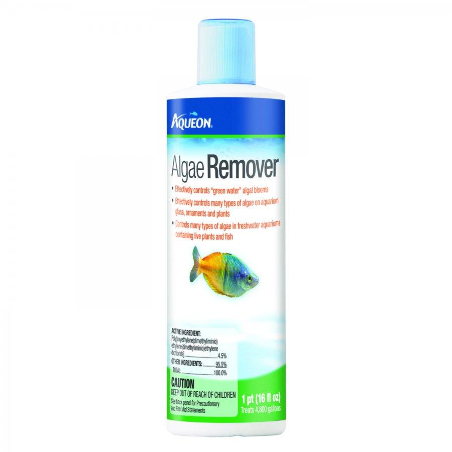 Aqueon algae remover aquarium supplies gregrobert for Fish tank algae remover