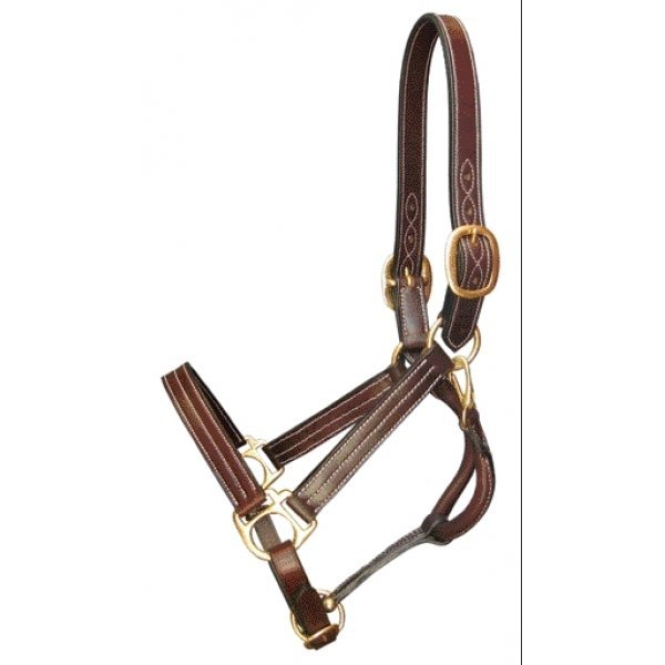 Gatsby Classic Leather Halter / Size (COB) Best Price