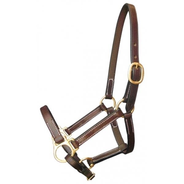 Equine Halter Stable / Size (Weanling) Best Price