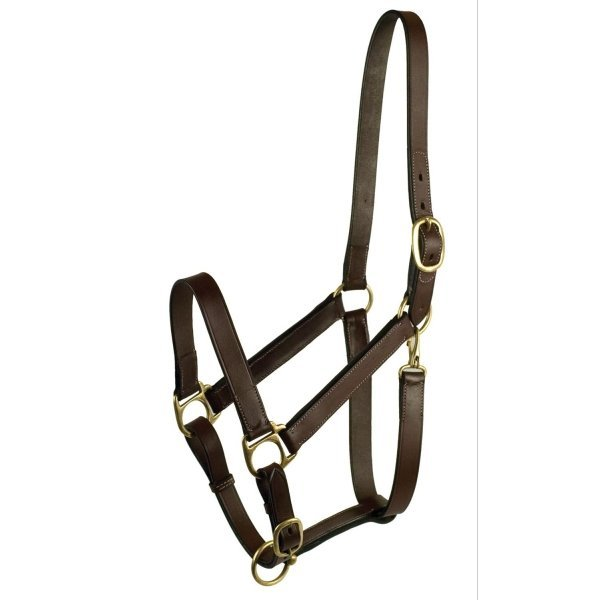 Equine Halter Stable / Size (Horse) Best Price