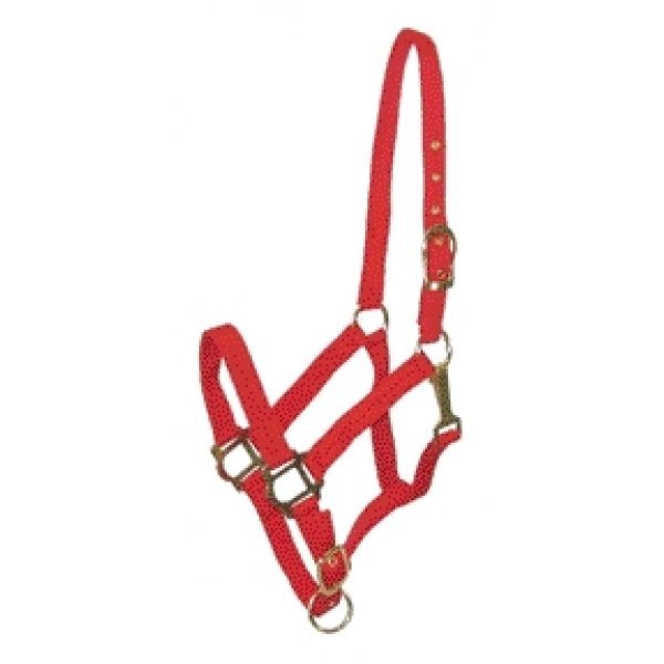 Nylon COB Halter / Color (Red) Best Price