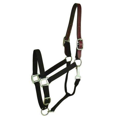 Nylon Breakaway Halter - Horse / Color (Black) Best Price