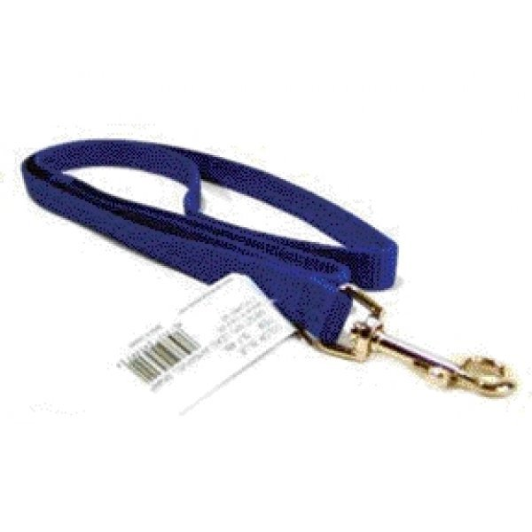 Nylon 5/8 In Thick Dog Leash / Size Blue / 4 Ft