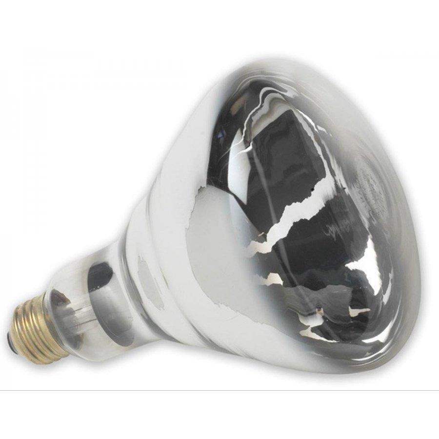 Heat Lamp Bulbs Gregrobert