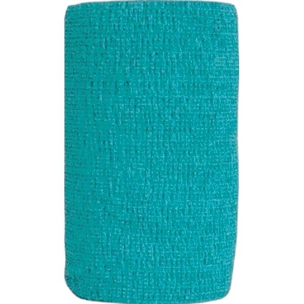 Co-Flex Flexible Pet Bandage  / Color (Teal) Best Price