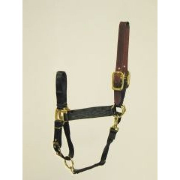 Adj Chin Halter with Headpole / Size (Average / Black) Best Price