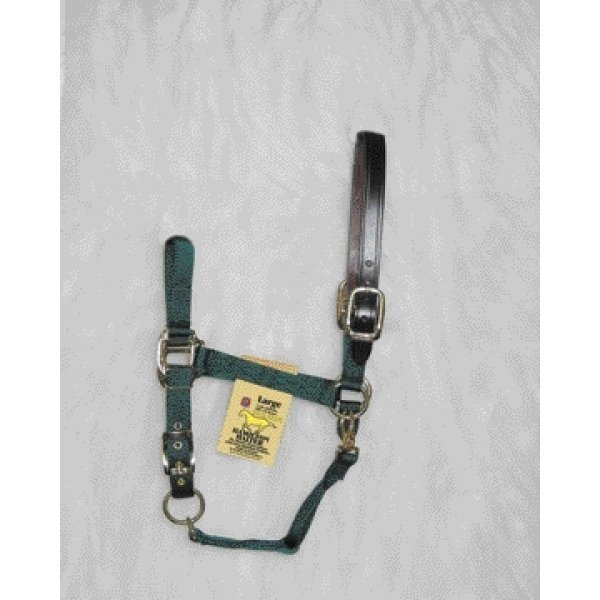 Adj Chin Halter with Headpole / Size (Average / Green) Best Price