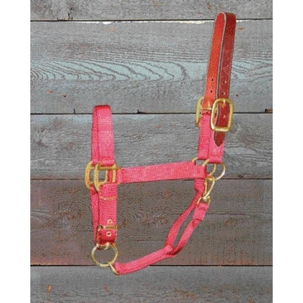 Adj Chin Halter with Headpole / Size (Average / Red) Best Price