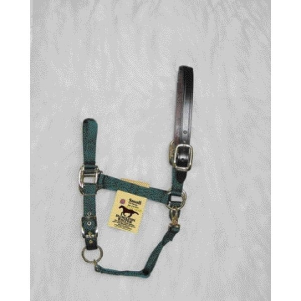 Adj Chin Halter with Headpole / Size (Small / Green) Best Price