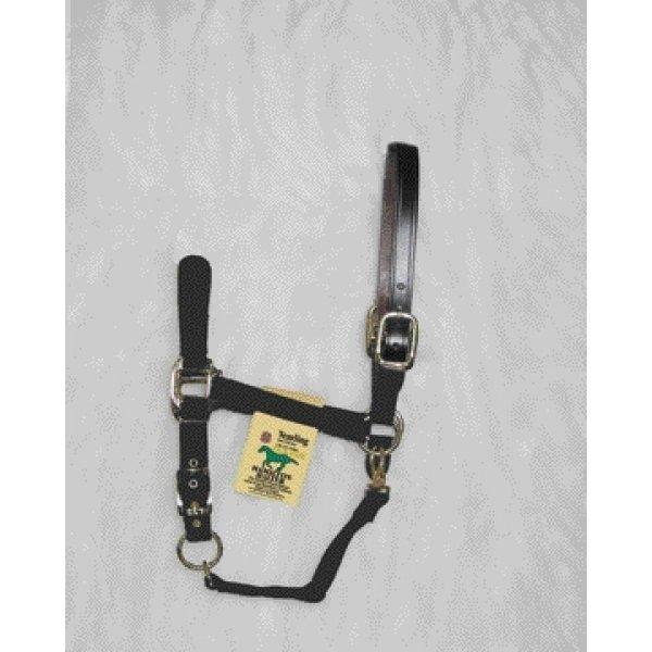 Adj Chin Halter with Headpole / Size (Yrl. / Black) Best Price