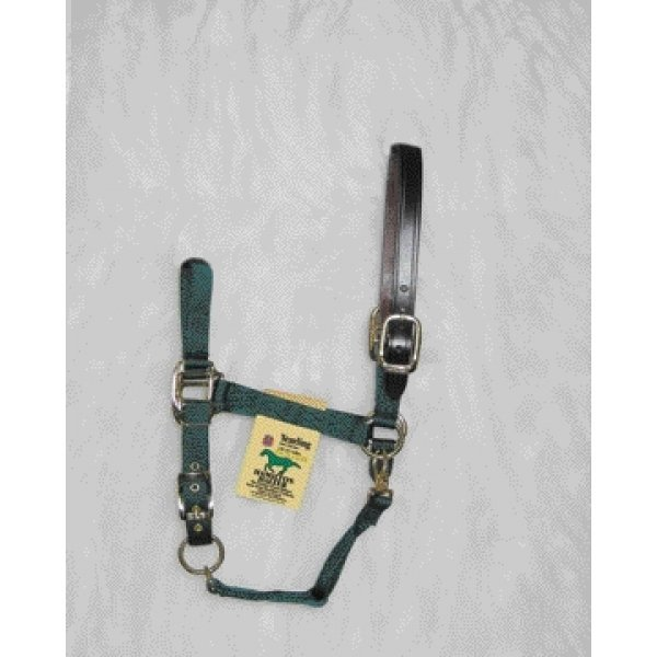 Adj Chin Halter with Headpole / Size (Yrl. / Green) Best Price