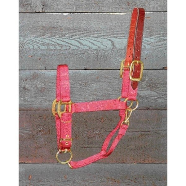 Adj Chin Halter with Headpole / Size (Yrl. / Red) Best Price