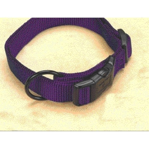 Adjustable 1 In. Dog Collar 18 26 In / Color Hot Purple