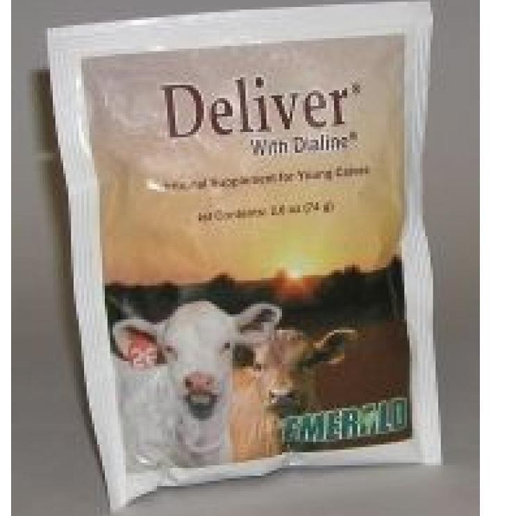 Deliver Extra Packet for Calves - 74 Gram Best Price