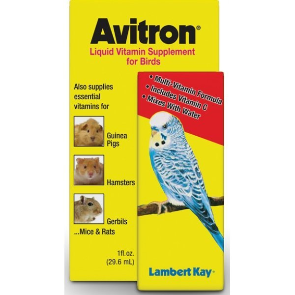 Avitron 1 oz. Liquid Vitamin Pet Supplement Best Price