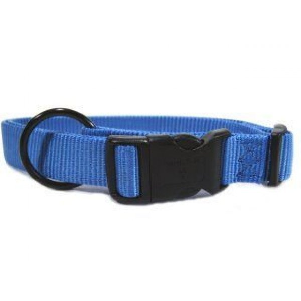 Adjustable 1 in. Dog Collar (18-26 in) / Color (Berry Blue) Best Price