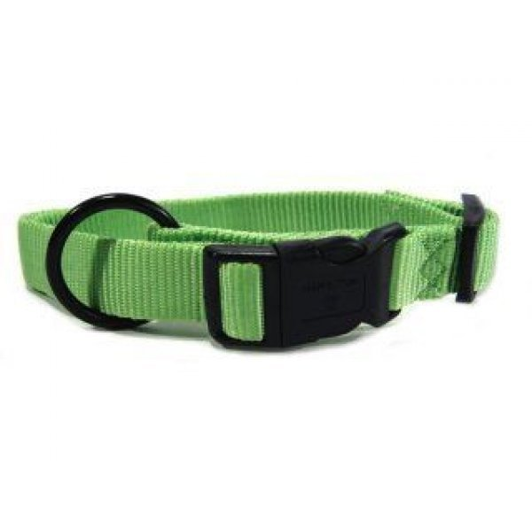 Adjustable 1 in. Dog Collar (18-26 in) / Color (Lime) Best Price