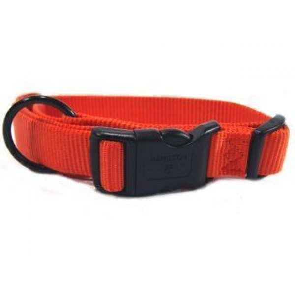Adjustable 1 in. Dog Collar (18-26 in) / Color (Mango)
