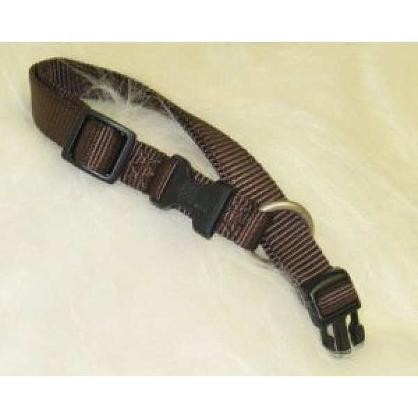 Adjustable 1 in. Dog Collar (18-26 in) / Color (Brown) Best Price