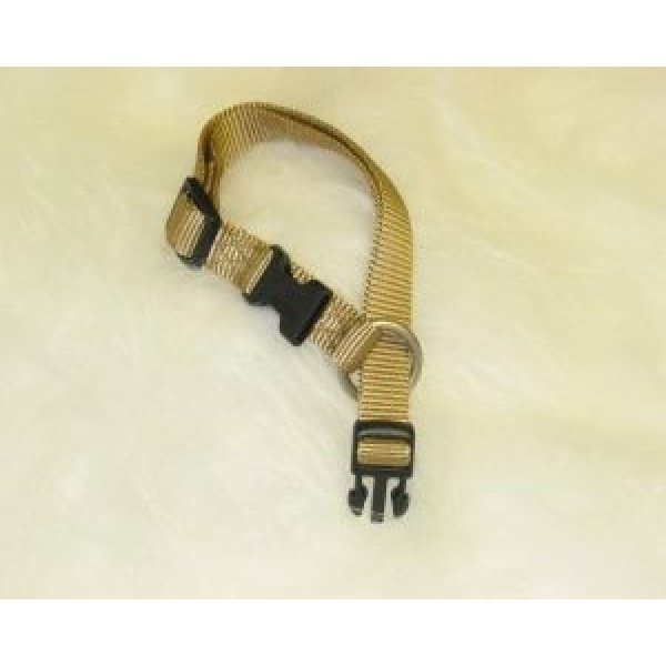 Adjustable 1 in. Dog Collar (18-26 in) / Color (Gold) Best Price