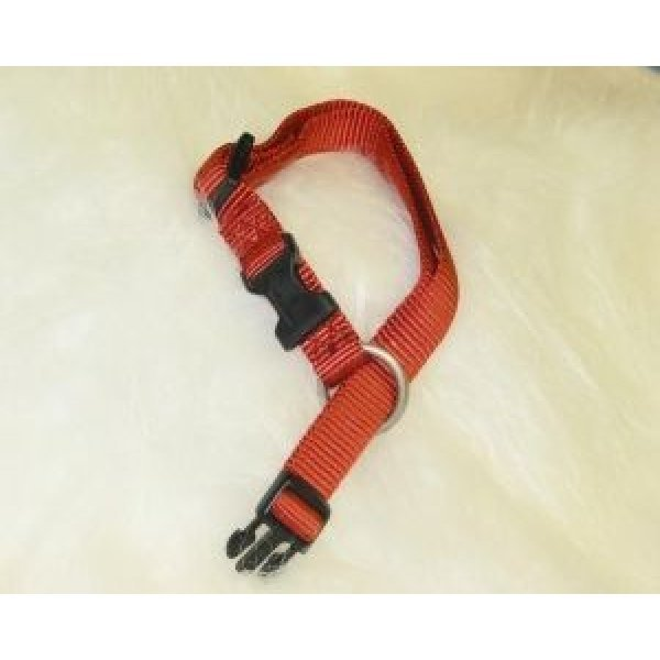 Adjustable 1 in. Dog Collar (18-26 in) / Color (Red Brick) Best Price