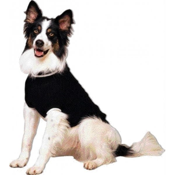 Classic Cable Dog Sweater / Size (Black / Large) Best Price